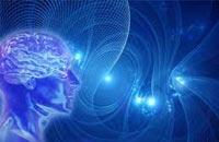 Структура биоэнергетического поля человека