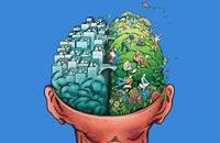 Об интуиции с умом