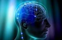 Особенности развития памяти и ее тренировка