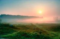 День начинается с утра