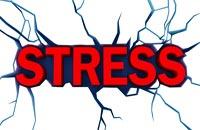 Что нужно знать о стрессе?