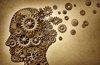 Равны ли по интеллекту мужчины и женщины?