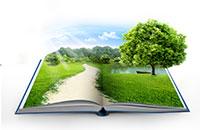 Почему книги по саморазвитию не приводят к успеху?
