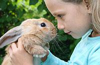 Пет-терапия - лечение домашними животными