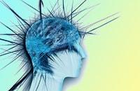 Тест когнитивных предпочтений