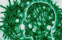 5 ментальных ловушек, в которые попадают люди