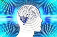 Методы развития интуиции