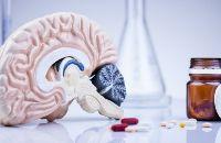 Вещества, помогающие в развитии интеллекта
