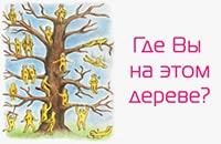 Тест, который покажет какой Вы человек. Где Вы на этом дереве?