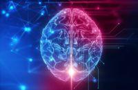Некоторые ключевые способности человеческого мозга с возрастом улучшаются